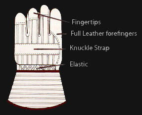 Gloves Guide graphic